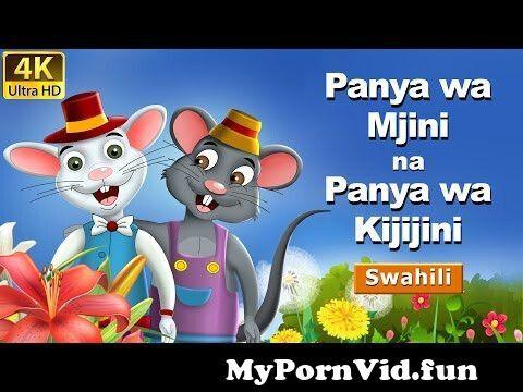 View Full Screen: panya wa mjini na panya wa kijijini 124hadithi za kiswahili 124 katuni za kiswahili124 swahili fairy tales.jpg