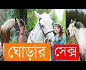 Khobor Bangla